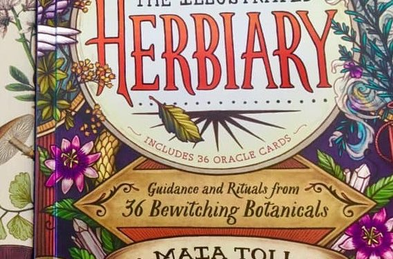 The Illustrated Herbiary; Guidance and Rituals from 36 Bewitching Botanicals